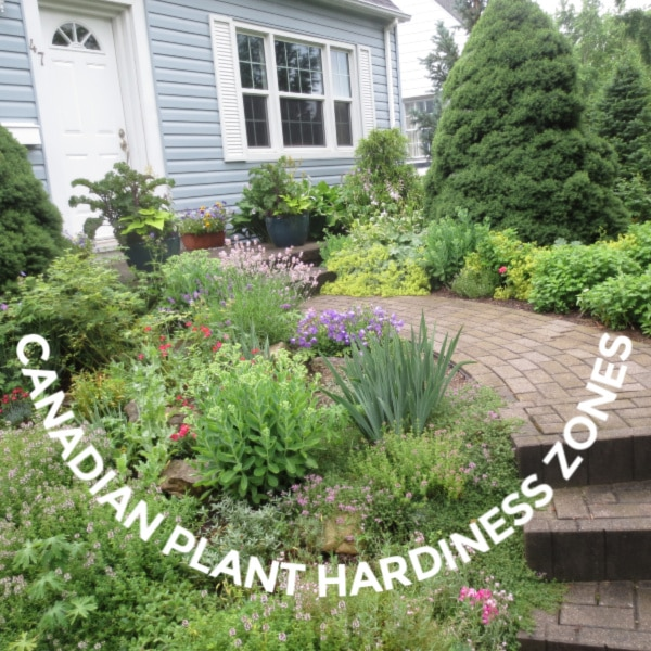 SQ Canadian Plant Hardiness Zones v1 - What Zone Is Thunder Bay For Gardening