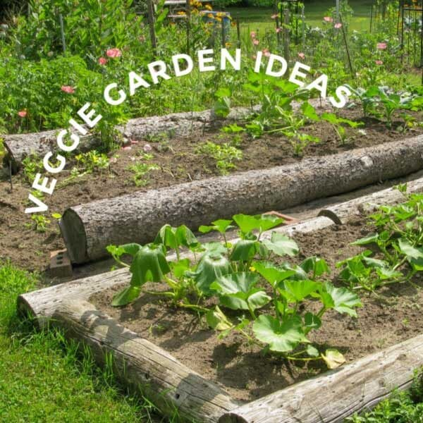 25 Vegetable Garden Ideas For Any Size Space Empress Of Dirt