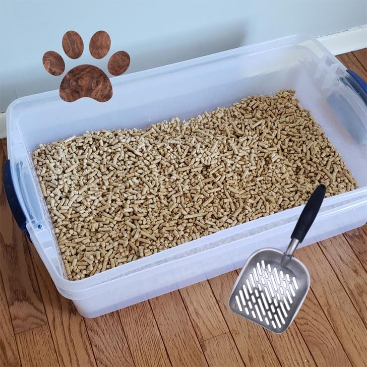 Homemade sifting cat litter box