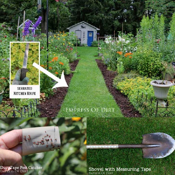 Examples of cheap garden hacks including using pieces of duct tape to catch pests.