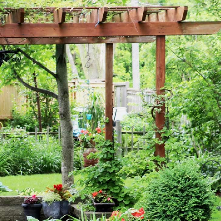 Tall, vertical, wooden garden structure in garden.