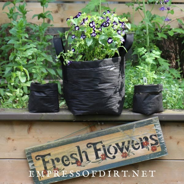 Fabric grow bags with flowers on edge of raised garden bed with 'Fresh Flowers' sign.