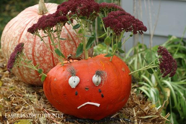 DIY no-carving required jack-o-lantern pumpkins