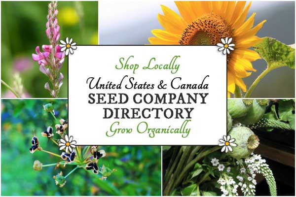 Directory of seed companies in Canada and the United States
