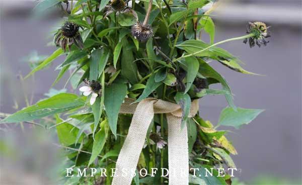 Burlap ribbbon around seed pods.