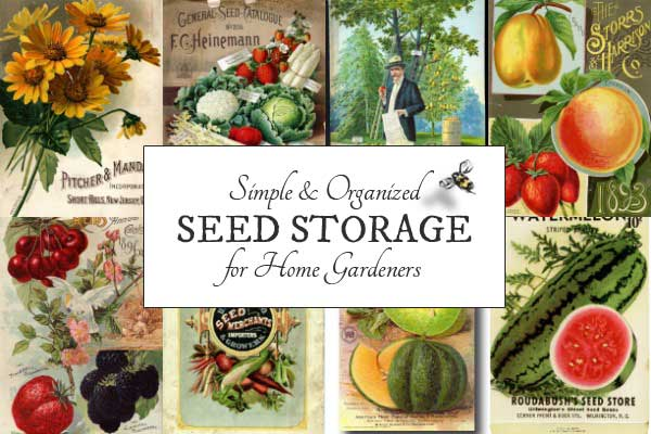 This is a really simple way to keep seeds organized. It makes it easy to find what I need, and comes with a handy reminder system as you'll see.