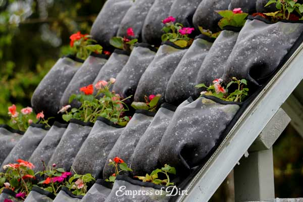 Living green roof made from shoebags and annual flowers