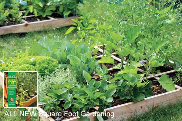 Example of a Square Foot Garden.