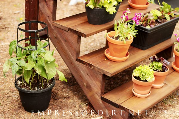 How to build a staircase plant stand for your garden.