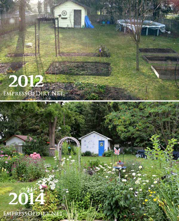 Garden before and after pictures.