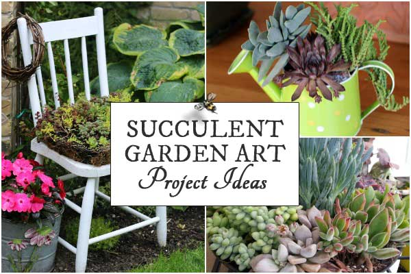 DIY Succulent Garden Art Ideas