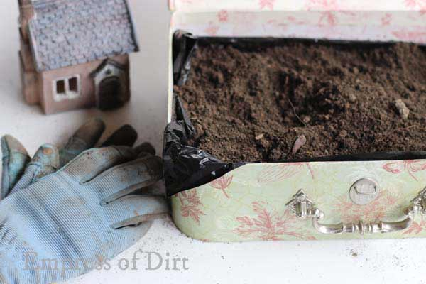 Potting mix in vintage suitcase for fairy garden.