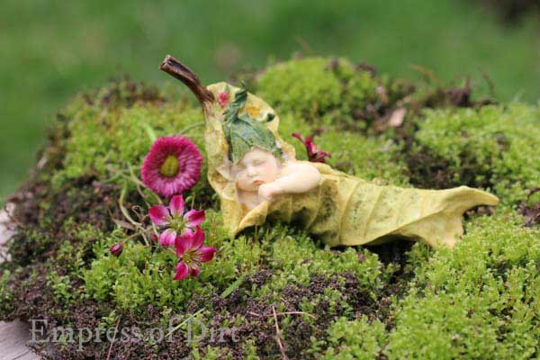 Sleeping baby fairy on moss in fairy garden.
