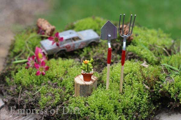 Garden tools and cacti in miniature garden.