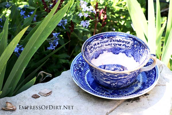 It doesn't get easier than this. A favorite tea cup and saucer can be super sweet as garden art.