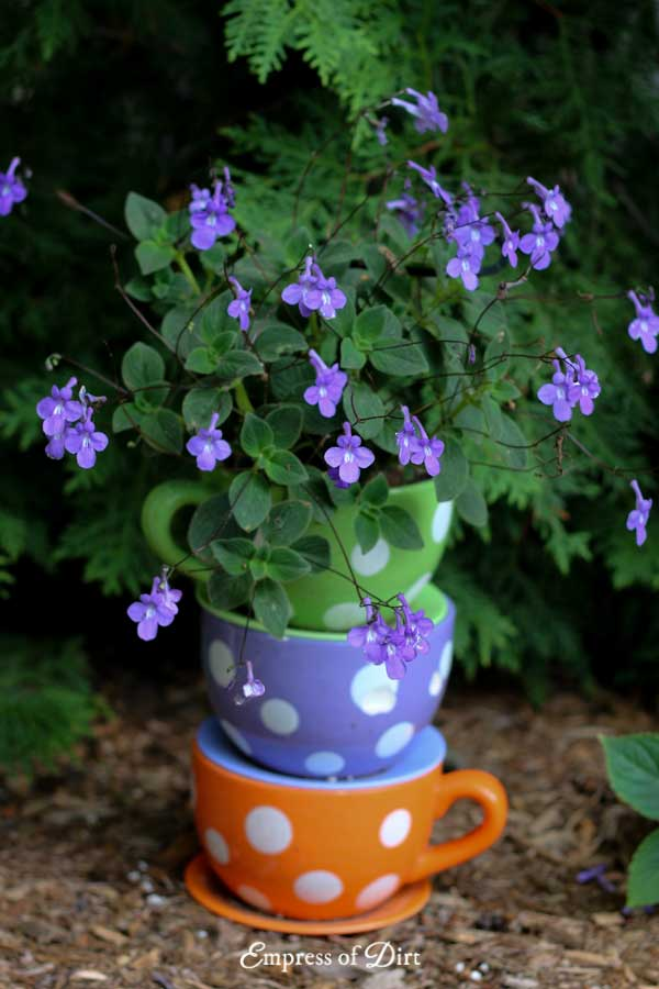 Have a look at these garden containers from home gardens and grab planter ideas for your yard