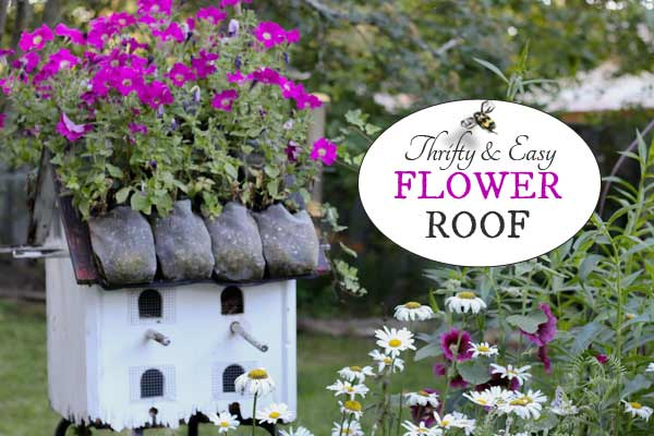 Make a Thrifty Green Roof
