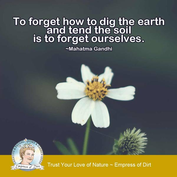 To forget how to dig the earth and tend the soil is to forget ourselves. ~Mahatma Gandhi