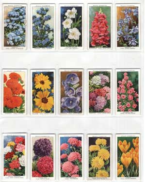 Collectible garden prints.
