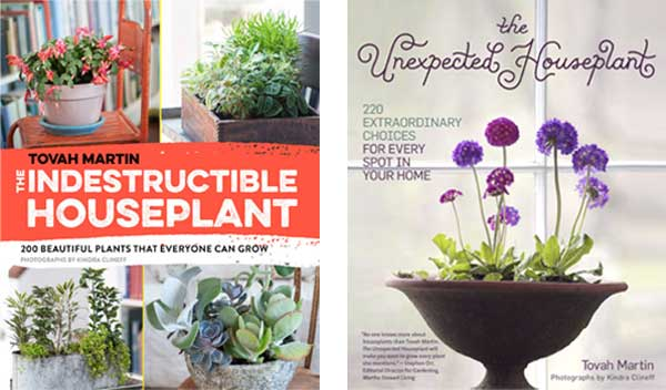 The Indestructible Houseplant and The Unexpected Houseplant by Tovah Martin - both excellent resources for houseplant fanatics.