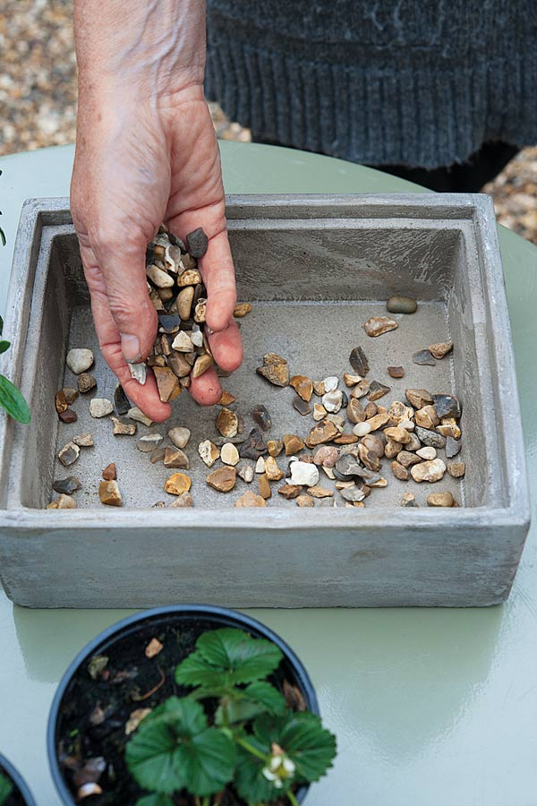 Start your miniature terrarium with a layer of gravel.