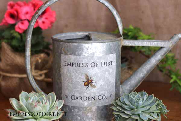 Galvanized watering can with custom label.