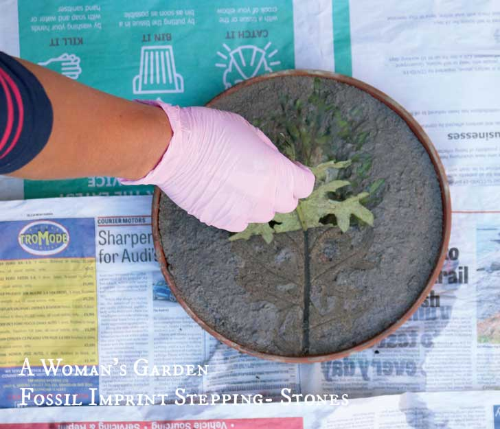 Hand adding leaf to a DIY fossil imprint stepping stone from the book, A Woman's Garden by Tanya Anderson.