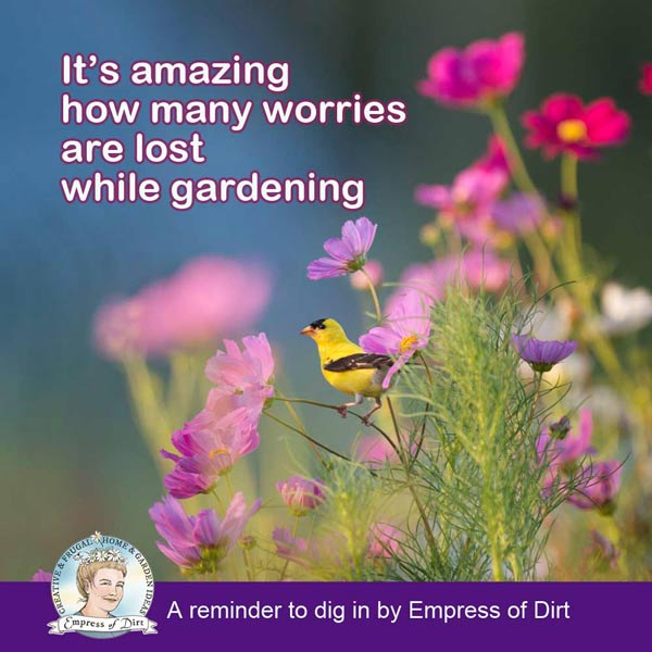It's amazing how many worries are lost while gardening.