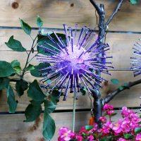 Garden art allium flower.
