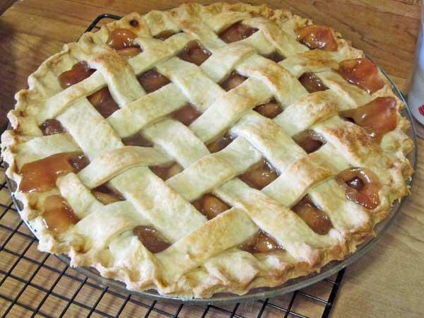 Fresh baked apple pie with lattice crust