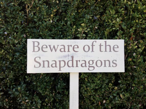 Beware of the Snapdragons by YourCozyCottage on Etsy