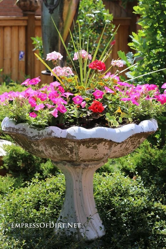 lovely bird bath planter
