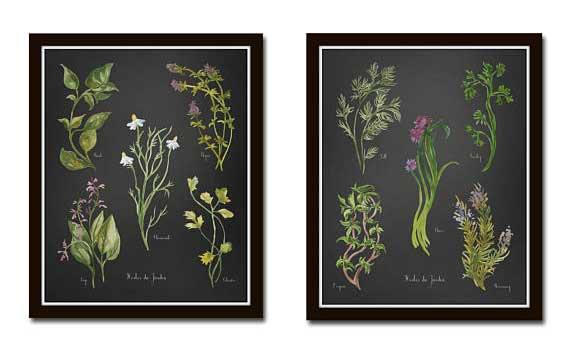 Watercolor Herb Prints | BelleMaisonArt Etsy Shop