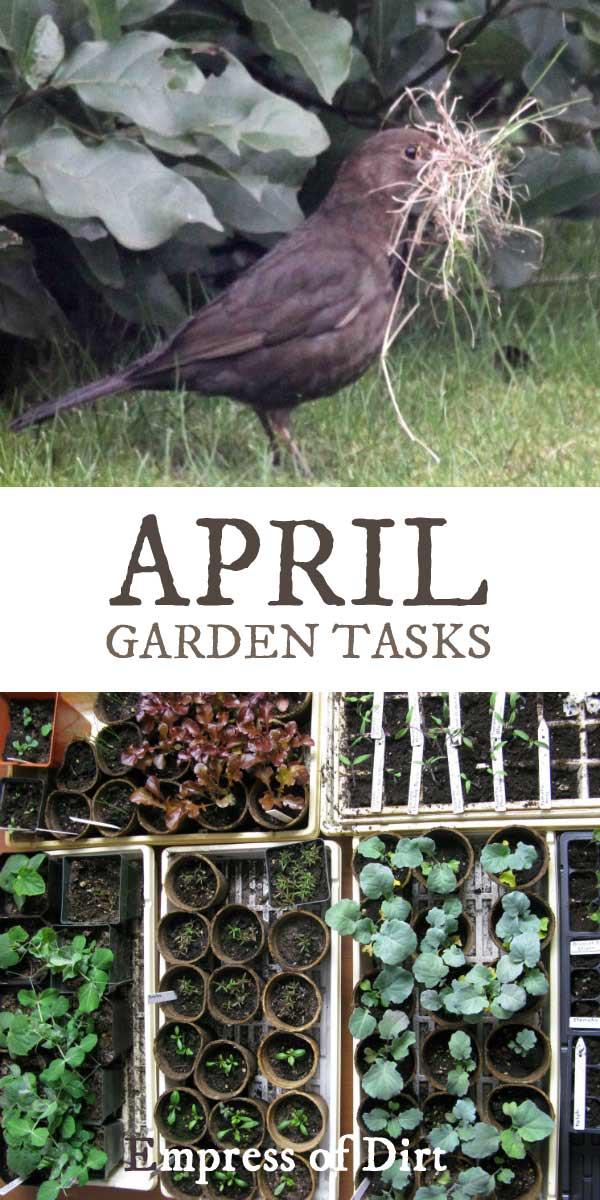 April garden tasks with Empress of Dirt