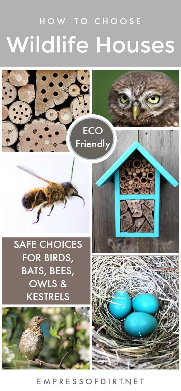 Want to provide safe nesting boxes for wildlife in your garden? See how to provide safe and eco-friendly houses for local birds, bees, bats, owls, and kestrels.
