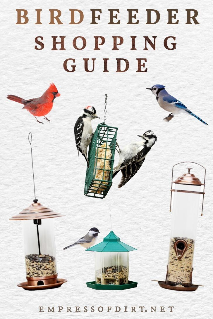Examples of bird feeders and birds including cardinal, blue jay, chickadee, and blue jay.