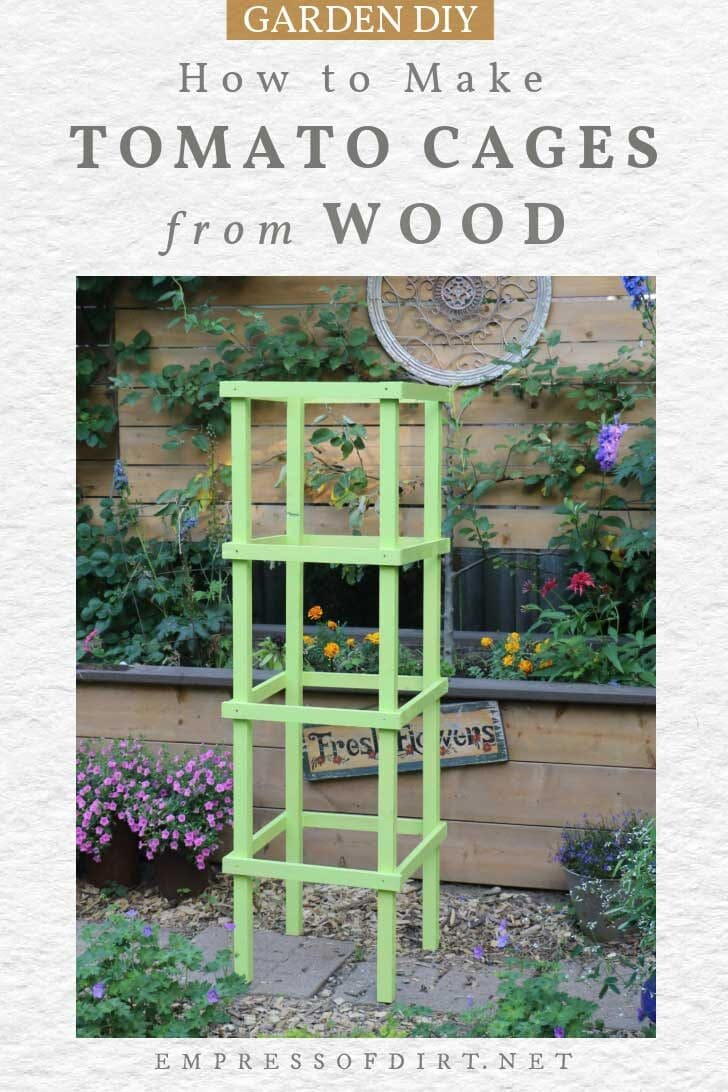 Wooden tomato cage painted light green.