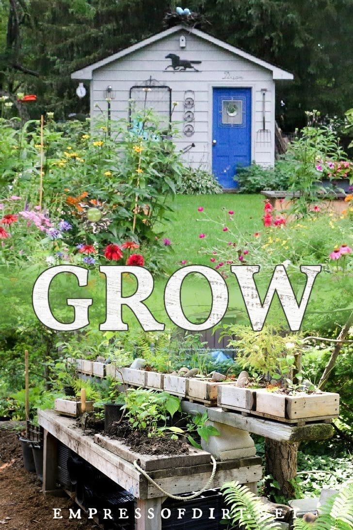 Empress of Dirt backyard flower garden.