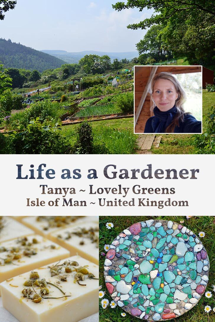 Tanya of Lovely Greens, her garden, and garden creations.