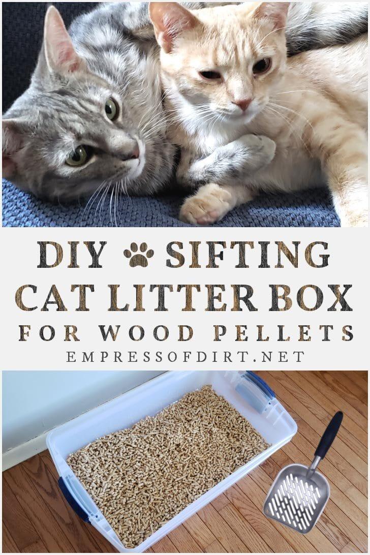 Homemade sifting cat litter box