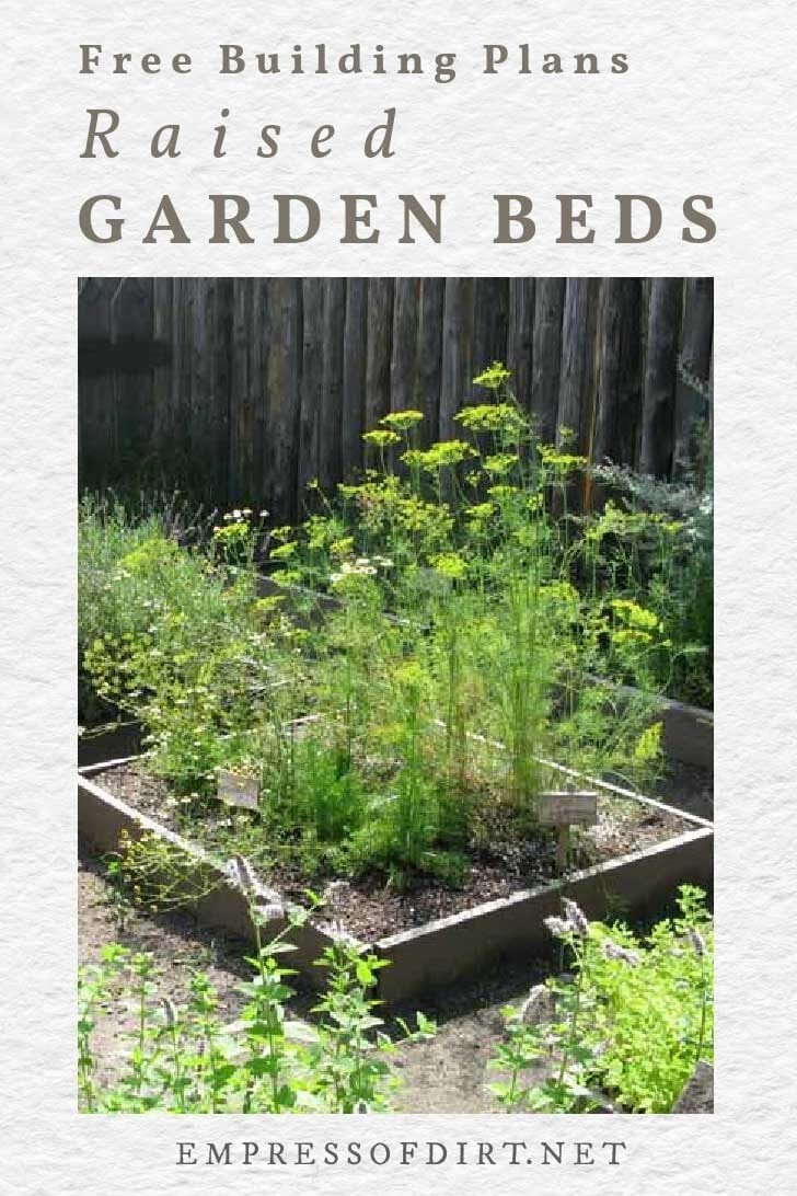 Raised garden bed with herbs and vegetables.