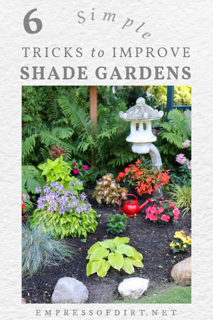 Bold, colorful plants and flowers in a shade garden.