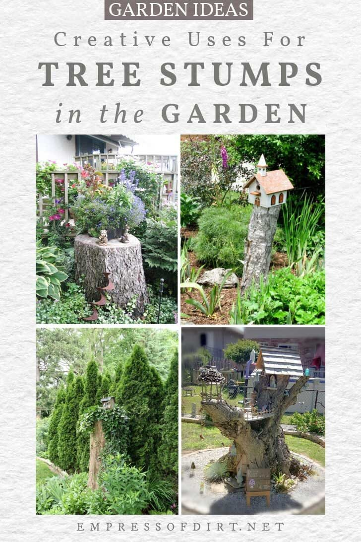 Examples of tree stumps used decoratively in the garden.