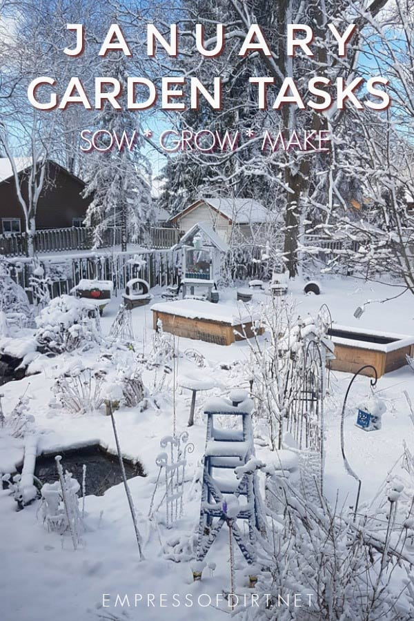 January Garden Tasks | What to Make and Grow