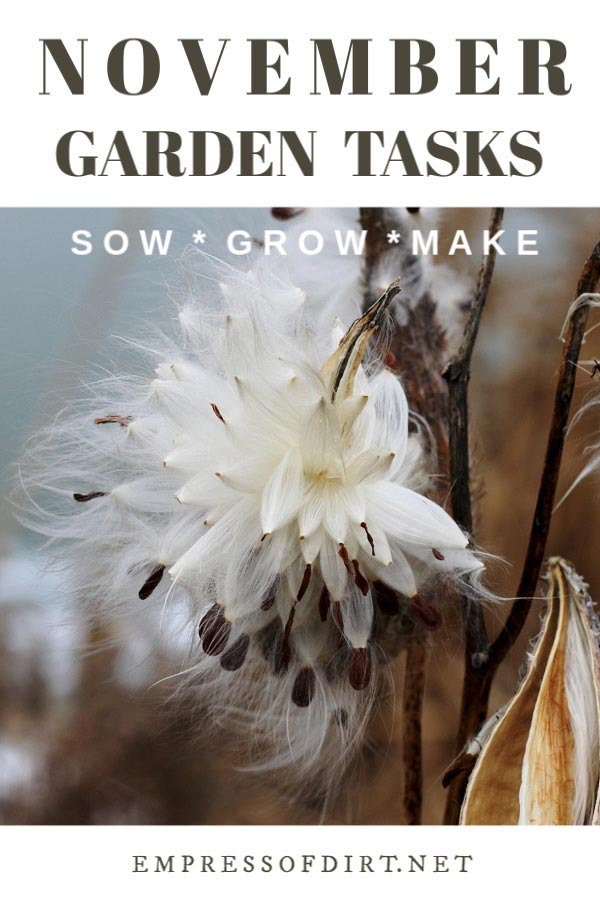 November Garden Tasks | What to Make and Grow