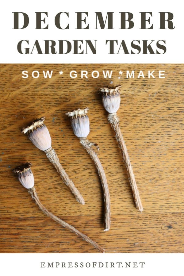 December Garden Tasks | What to Make and Grow