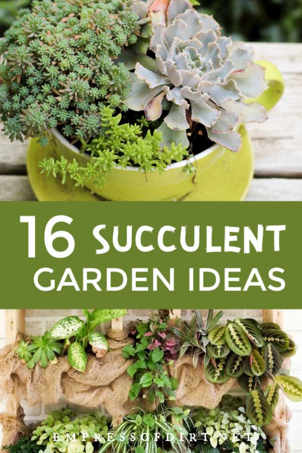 16 Creative Succulent Garden Ideas Empress Of Dirt
