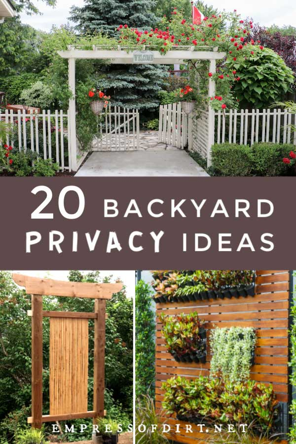 20 Ideas For Better Backyard Privacy Empress Of Dirt