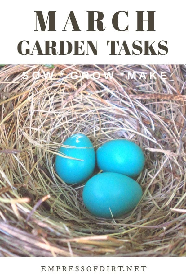 March Garden Tasks (What to Make and Grow)