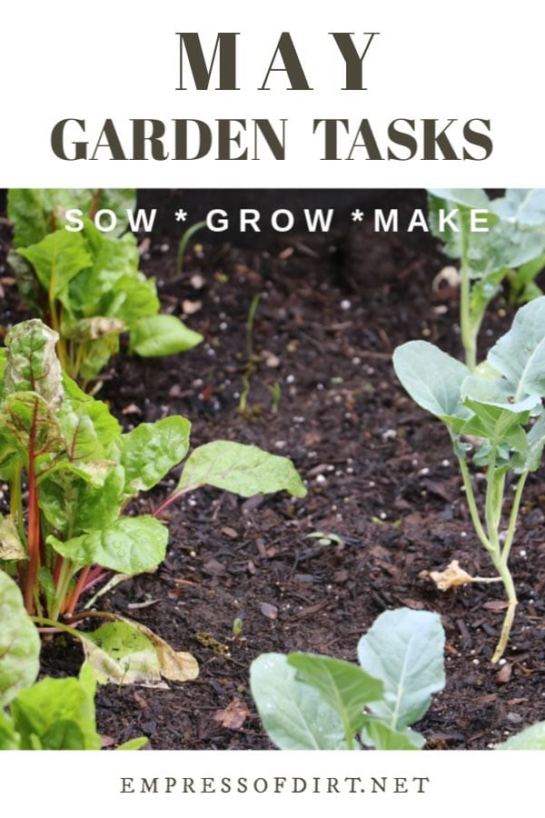 May Garden Tasks (What to Make and Grow)